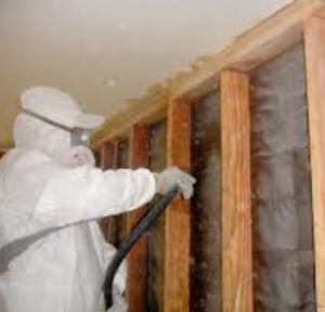 AGH Construction Termite Repair